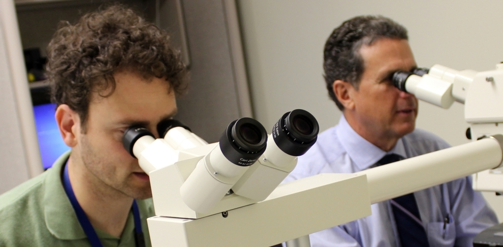 Resident looking through a microscope with his mentor