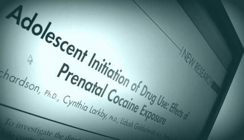 prenatal cocaine exposure